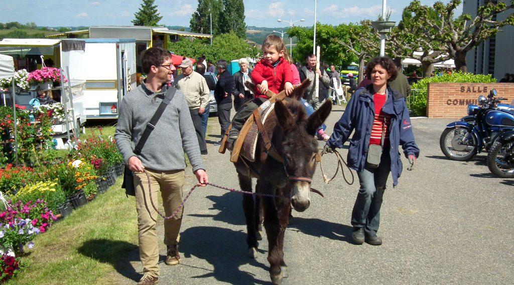 Fête de l'intercommunalité | fête de l'âne en 2013