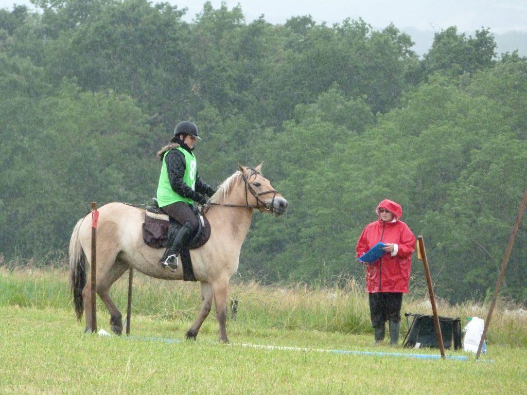 TREC 2016: Épreuve: le Parcours en Terrain Varié (PTV): il est composé de 12 à 18 difficultés. Naturelles ou simulées comme sur la photo, ces difficultés reproduisent des situations que le cavalier et le cheval peuvent rencontrer en pleine nature.