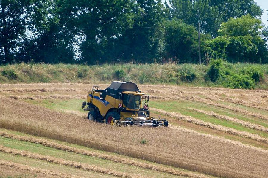 Agriculture Puycornet